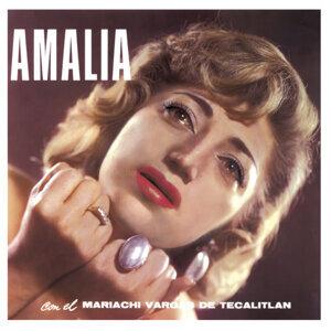 Amalia Vol. 1