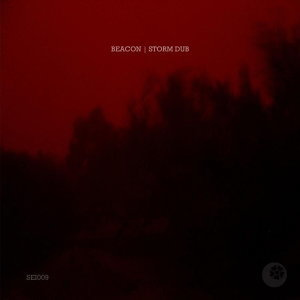 Storm Dub EP
