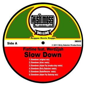 Slow Down (feat. Werd2jah)
