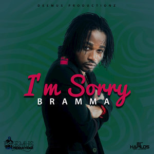 I'm Sorry - Single