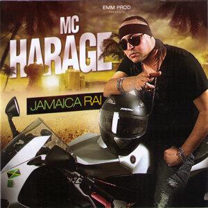 Jamaica raï