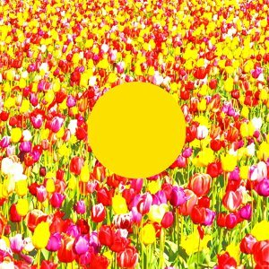 Spring Song - Jeremy Ebell Remix