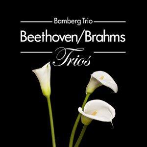 Beethoven/Brahms: Trios