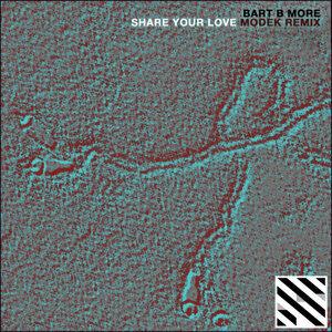 Share Your Love (Modek Remix) - Single