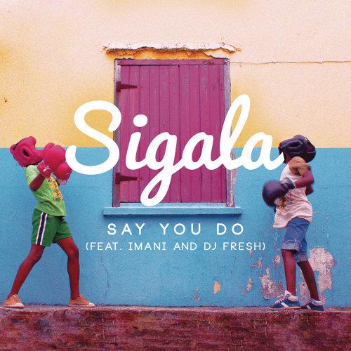 Say You Do - Radio Edit