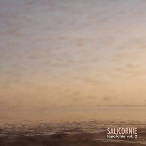 Salicornie: Topofonie Vol. 2