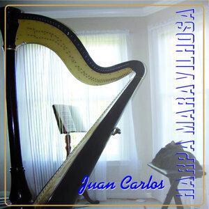 Harpa Maravilhosa
