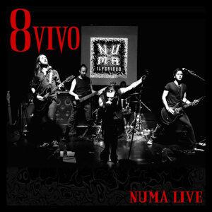 8 vivo