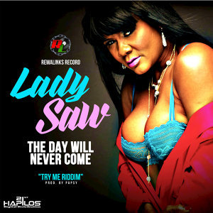 The Day Will Never Come - Single