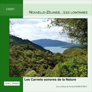 Naturophonia: Nouvelle-Zélande... Iles lointaines