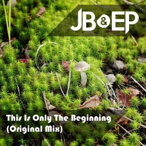 This Is Only the Beginning - Original Mix
