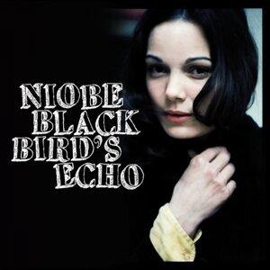 Blackbird's Echo