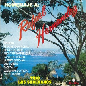 Homenaje a Rafael Hernandez Trio los Soberanos