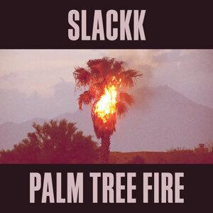 Palm Tree Fire