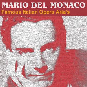Famous Italian Opera Aria's