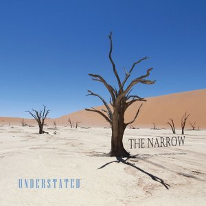Understated - Best of the Narrow Acoustic