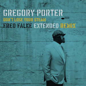 Don't Lose Your Steam - Fred Falke Extended Remix