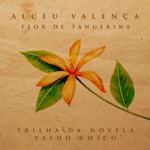 Flor de Tangerina - Single