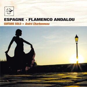 Espagne Flamenco Andalou - Guitare solo