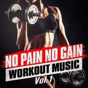 No Pain No Gain Workout Music, Vol. 1