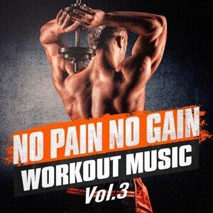 No Pain No Gain Workout Music, Vol. 3