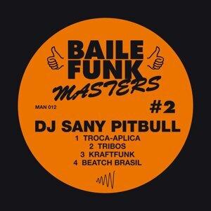 Baile Funk Masters #2