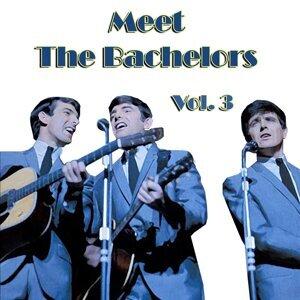 Meet the Bachelors, Vol. 3