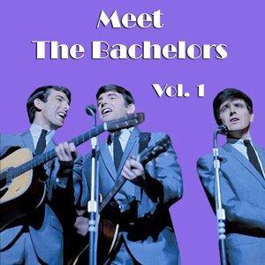 Meet the Bachelors, Vol. 1