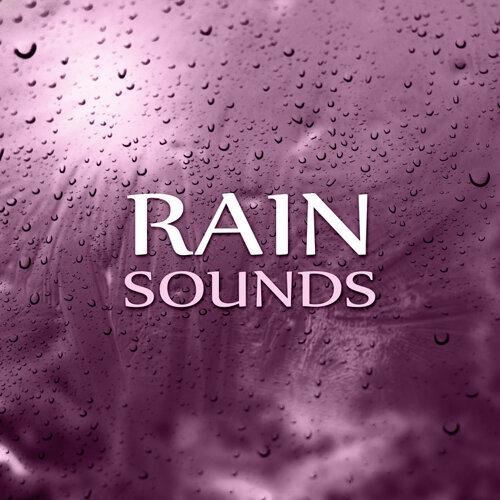 Healing Rain Sound Academy - Rain Sounds – Rain Forest, Pacific