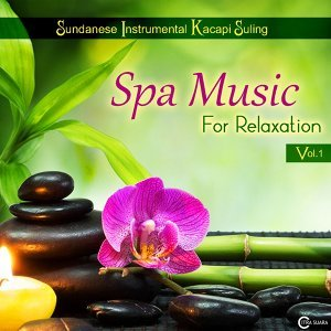 Spa Music for Relaxation, Vol. 1