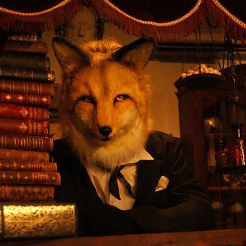 Waltz with the Fox