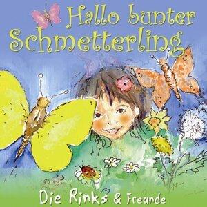 Hallo bunter Schmetterling