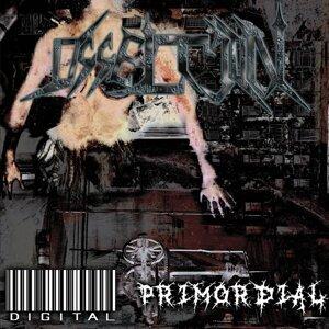 Digital / Primordial
