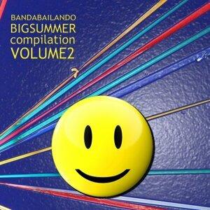 Big Summer Compilation, Vol. 2 - Dance, Holidays, Latin, Hit, Disco