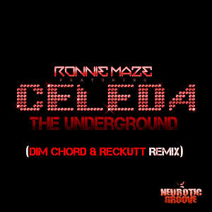 The Underground (Dim Chord & Reckutt Remix)