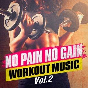 No Pain No Gain Workout Music, Vol. 2