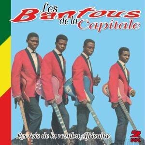 Les rois de la rumba africaine, Vol. 2