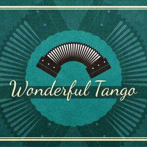 Wonderful Tango
