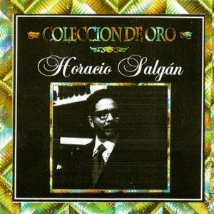 Colección de Oro. Horacio Salgán
