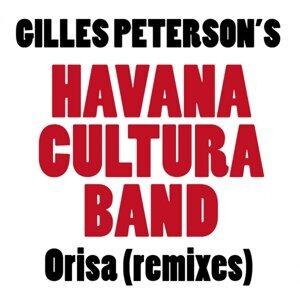 Orisa - Remixes