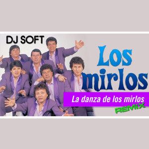 La Danza de los Mirlos (Remix)