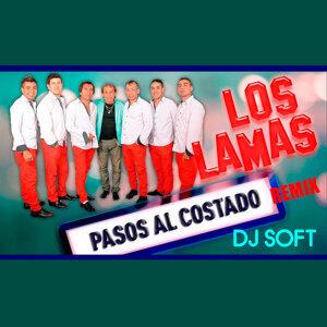 Pasos al Costado (Remix)