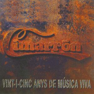 25 Anys de Música Viva