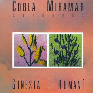 Ginesta I Romaní