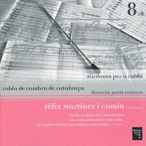 Fèlix Martínez I Comín (1920-1995)
