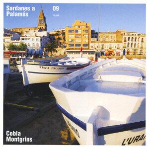 Sardanes a Palamós, Vol. 9