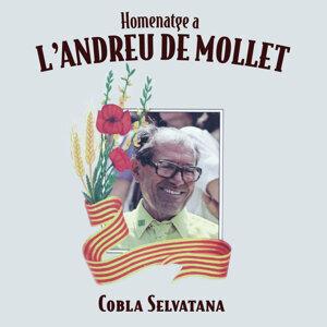 Homenatge a L'Andreu de Mollet