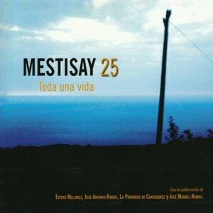 Mestisay 25 Toda Una Vida