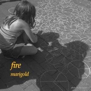 FIRE (fire)