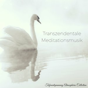 Transzendentale Meditationsmusik - Positive Entspannungsmusik zur Meditation, Reiki und Yoga (Tiefenentspannung Atmospheres Collection)